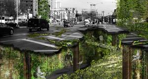 Sole e verde per abitare spazi sotterranei a New York. Ricette per la sopravvivenza o di Francesca Capobianco