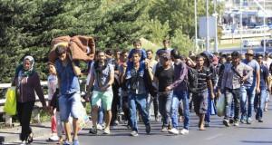 L'Europa dei profughi – di Alessandra Muntoni
