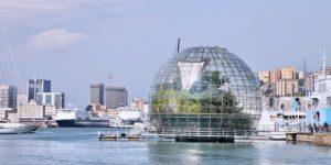Se fossi stato Renzo Piano – di Daniel Screpanti